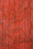 Revestimiento de madera rojo del granero con las vides Imagen de archivo