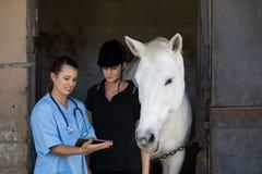 Revise mostrar la tableta digital al jinete mientras que hace una pausa el caballo fotografía de archivo