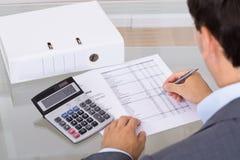 Revisor som beräknar finanser Fotografering för Bildbyråer