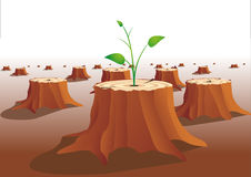 Revival. Young tree grows on a tree stump royalty free illustration