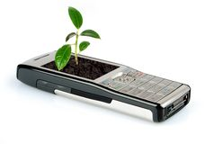 Revival. Plant rising from screen of the telephone Stock Photography
