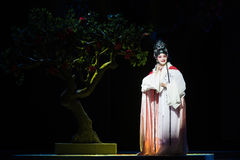 """Revive after death-Jiangxi opera """"Red pearl"""". Large original red pearl Jiangxi tells the story of a classical tragedy of love, deep thinking is the Royalty Free Stock Images"""