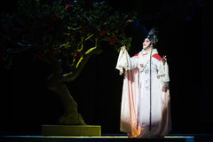 """Revive after death-Jiangxi opera """"Red pearl"""". Large original red pearl Jiangxi tells the story of a classical tragedy of love, deep thinking is the Royalty Free Stock Photography"""