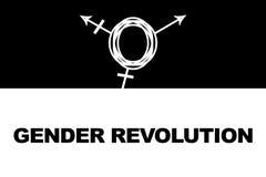 Revolución del género Símbolo del transexual Fotografía de archivo