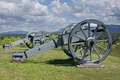 Revolutionäre Kanonen Stockfotos