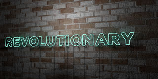 REVOLUTIONARY - Glowing Neon Sign on stonework wall - 3D rendered royalty free stock illustration. Can be used for online banner ads and direct mailers Stock Photography