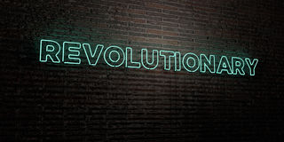 REVOLUTIONARY -Realistic Neon Sign on Brick Wall background - 3D rendered royalty free stock image. Can be used for online banner ads and direct mailers Stock Photos