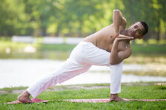 Revolved Side Angle Pose Royalty Free Stock Image
