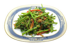Revuelva a Fried Water Spinach, correhuela con el camarón seco, mariscos, comida tailandesa Imagen de archivo