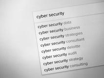 Rewizja wynika o cyber ochronie obrazy royalty free