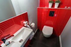 Rewolucjonistek płytki w współczesnej toalecie zdjęcie stock