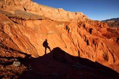 Rewolucjonistek pustynne g?ry fotografia stock