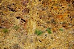 Rewolucjonistek skały z trawą Fotografia Royalty Free