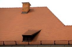 Rewolucjonistka dach Obraz Stock