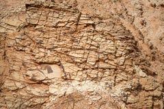Rewolucjonistka kamień Zdjęcie Royalty Free