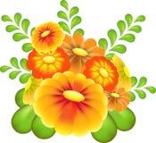 Rewolucjonistka, kolor żółty, Bronw ogródu kwiatu wektor na białym tle Zdjęcia Stock