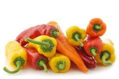Rewolucjonistka, kolor żółty i pomarańczowy słodki pieprz, (capsicum) Obrazy Stock