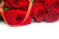 Rewolucjonistka kwitnie róże Zdjęcie Stock