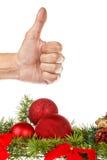 Rewolucjonistka ornamenty z sosną lub jodłą dla drzewa bożych narodzeń lub nowego roku Fotografia Stock