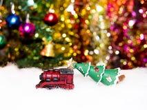 Rewolucjonistka pociągu lug zieleni poinsecja na śniegu Fotografia Stock