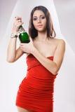 Rewolucjonistki chaqmpagne smokingowa brunetka. zdjęcie royalty free