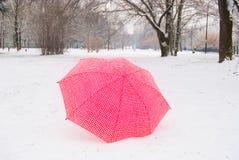 Rewolucjonistki i białego w kratkę parasol na śniegu w parkland zdjęcia royalty free