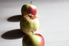 Rewolucjonistki i zieleni jabłka Zdjęcie Royalty Free