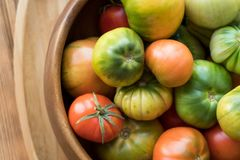 Rewolucjonistki i zieleni pomidory na drewnianym tle Pomidorowy żniwo obrazy stock