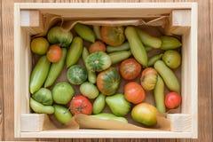 Rewolucjonistki i zieleni pomidory na drewnianym tle Pomidorowy żniwo fotografia stock