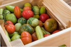 Rewolucjonistki i zieleni pomidory na drewnianym tle Pomidorowy żniwo zdjęcie royalty free