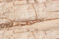 Rewolucjonistki marmurowa tekstura, Wyszczególniająca struktura marmur Obrazy Stock