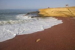 Rewolucjonistki plaża, Paracas, Peru Zdjęcie Royalty Free