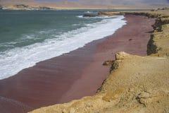 Rewolucjonistki plaża, Paracas, Peru Obraz Royalty Free