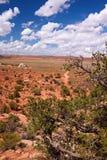 Rewolucjonistki pustynia Fotografia Royalty Free