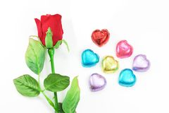 Rewolucjonistki róża i colourful kierowa dekoracja dla valentine 's dzień na białym tle zdjęcie royalty free