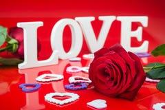 Rewolucjonistki róża i piękny Zdjęcia Royalty Free