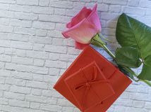 Rewolucjonistki róża na białego ściana z cegieł boxl dekoraci czerwonym zaproszeniu Obraz Royalty Free