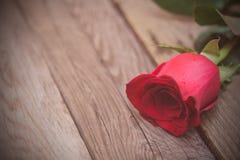 Rewolucjonistki róża na ciemnym drewnianym tle Kobieta dzień, walentynka d Obrazy Royalty Free