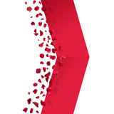 Rewolucjonistki róży płatki Strzałkowaci zdjęcie stock