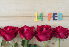Rewolucjonistki róża 39 Obrazy Royalty Free