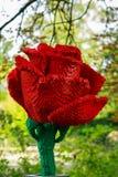 Rewolucjonistki róża w lego w Planckendael zoo obrazy royalty free