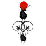 Rewolucjonistki róża z czarnymi projektów elementami Fotografia Stock