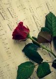 Rewolucjonistki róża z muzykalnymi notatkami Obraz Royalty Free