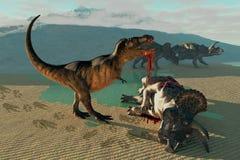 三角恐龙和暴龙 免版税图库摄影