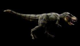 暴龙Rex 免版税库存图片
