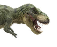 暴龙Rex 库存图片