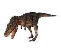 Rex de dinosaur de Dino regardant vers le bas Images stock