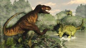 Rex de tyrannosaure luttant contre le styracosaurus Photos stock
