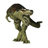 Rex de Tyrannosaurus de dinosaur sur le blanc Photos stock