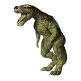 Rex de Tyrannosaurus de dinosaur sur le blanc Photographie stock libre de droits